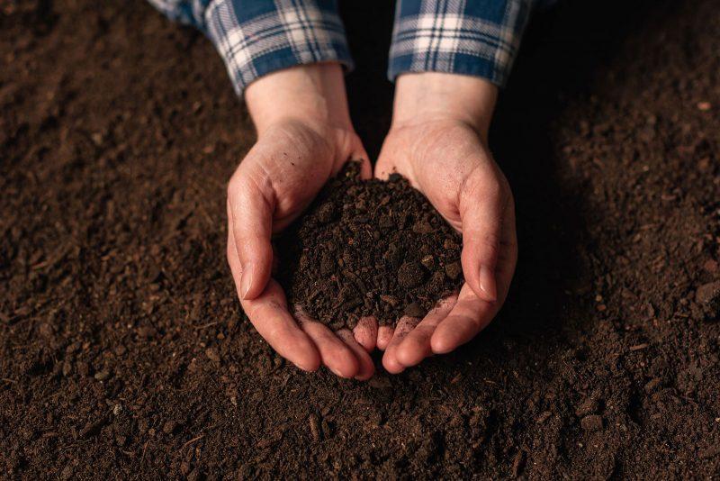wormsmart-soil-test